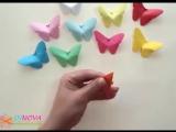 Бабочки, очень красивые бабочки