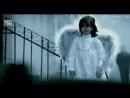 MORANDI -ANGELS !