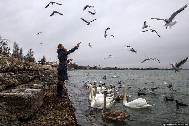 Фото №456239064 со страницы Андрея Дарийчука