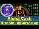 Alpha Cash Как зарегистрироваться и пополненить баланса Alpha Cash