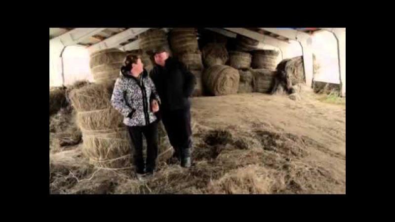 Своя земля 2014 Фильм Никиты Михалкова (Фильмы 1-2)
