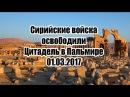 Cирийские войска освободили Цитадель в Пальмире. 01.03.2017