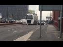 Swan Disrupting Traffic In Manchester
