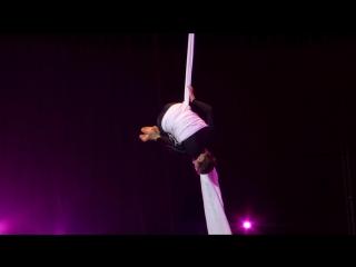 Коренева Анастасия, Цирк студия