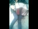 кросива играет на гармошке