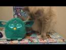 Нануся и Фербик - Ферби от Хасбро - новая игрушка для детей.Играем в приложение. Смотрите на нашем канале:https://www.youtube.co