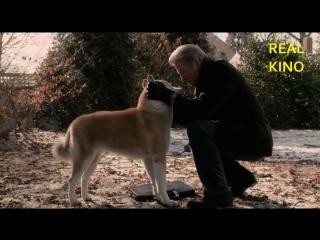 Хатико самый верный друг (2009) супер фильм 8.7/10