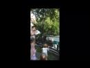 Кормление тигра-альбиноса)