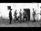 Легенды уголовного розыска - Последний законник