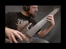 CENOTAPH Asphyxiated Embryonic Abnormalities on bass