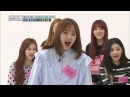 Weekly Idol EP.320Pocket Girl Boy were Born 포켓보이앤걸 탄생