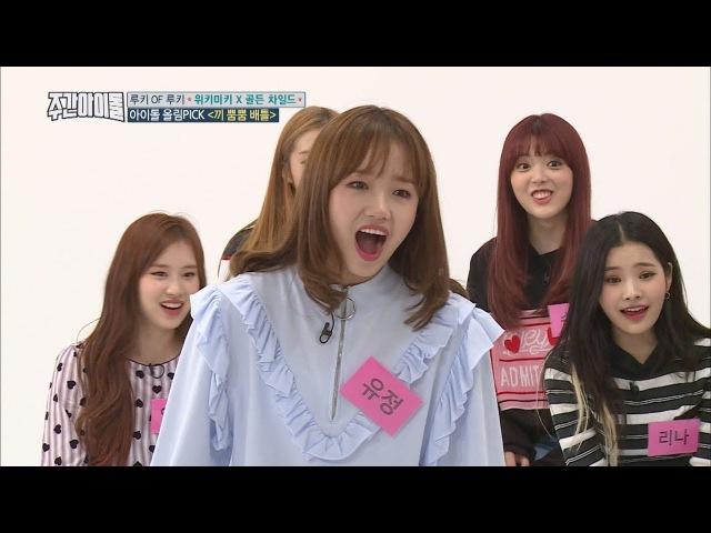 (Weekly Idol EP.320)Pocket Girl Boy were Born [포켓보이앤걸 탄생]