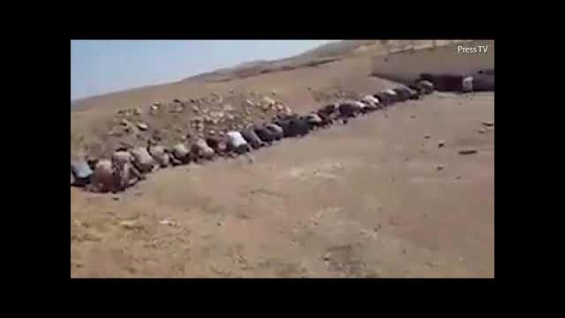 Пленные Террористы ИГ в Тель Афаре