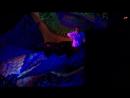 Ciquid Vision @ Retro Party 2