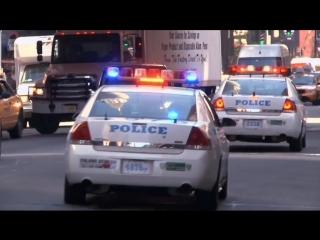 Музейные Тайны 8 сезон 03_Alligators in the Sewers_Unstoppable Car_Founding Forensics