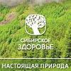 Бизнес с Сибирским Здоровьем|Соль-Илецк|Оренбург