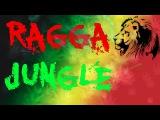 Ragga Jungle Drum &amp Bass ''Freedom Flame'' Mix By Simonyan vol.24