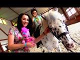 Катаемся на пони с Пинки Пай. Москва для детей