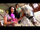 Москва для детей видео 🐎 Катаемся на ПОНИ! Игры ЛитлПони Активный отдых Куда сх...