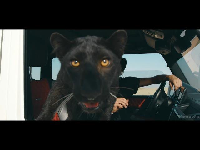 Filatov Karas - Lirika feat. Rada (Fantazëp Video)