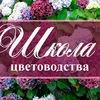 Школа цветоводства 🌸 Наш дом всегда в цветах 🌸
