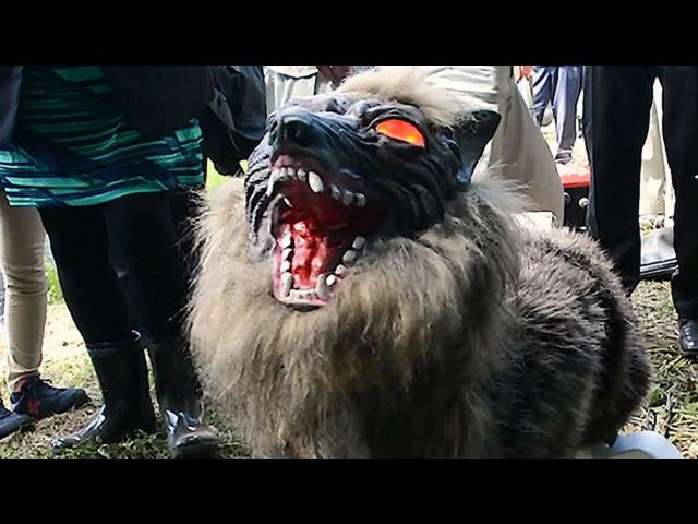 オオカミ型ロボ「スーパーモンスターウルフ」でイノシシを撃退 千 33865