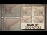 MRMK MUSIC | bear pit - crisis actors [2017] rock postpunk u2 indie