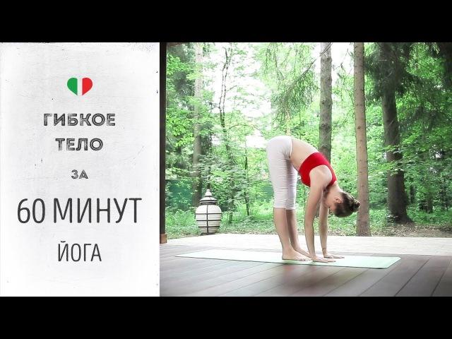 Гибкое тело за 60 минут — Йога для начинающих и продвинутых.