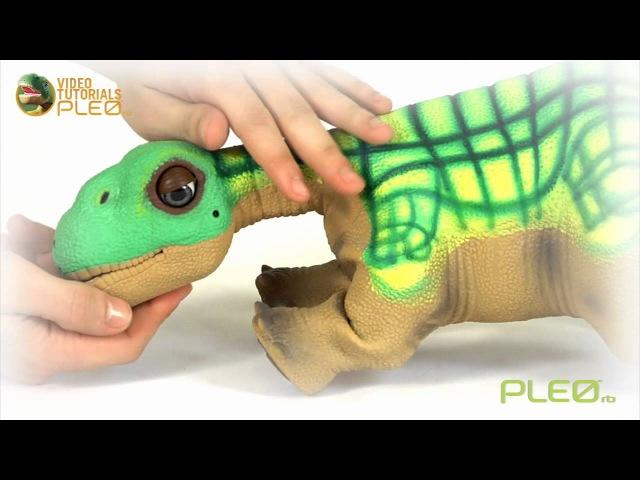 Робот-динозавр Pleo rb - быстрый старт