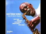 David Fathead Newman - Willow Weep For Me (2001)