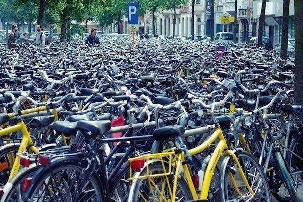 Гамбург планирует полностью отказаться от автомобилей к 2034 году. В г