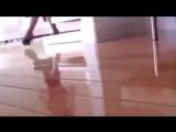 PAPITO - CHOCOLATE - SEEYA клип (секси).mp4
