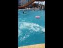 Арай аквапарк