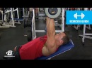 Incline Dumbbell Press with Hunter Labrada Exercise Guide