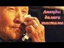 Ананды далаға тастама Аянышты Видео