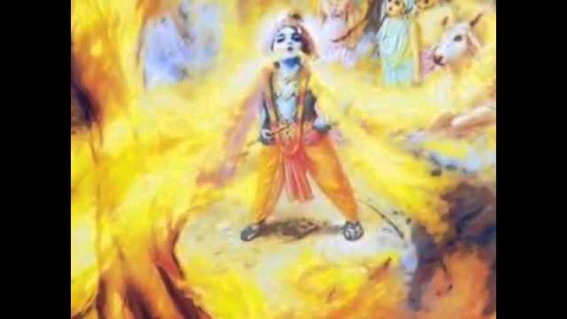 Chandramukha Swami - Bhaja Govinda feat Srila Prabhupada