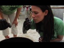 Actress Rhona Mitra tours oil spill with Global Green Calls for clean energy future