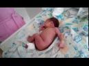 Развивающий уход за новорождённым в первые 3 мес. жизни. 3 раза в день перед сменой подгуза...