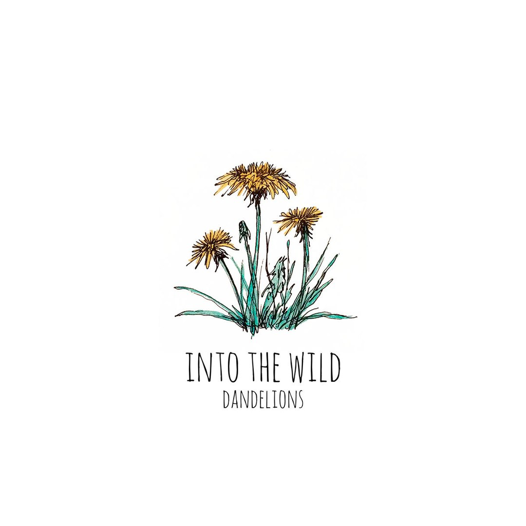 Into The Wild - Dandelions (2017)