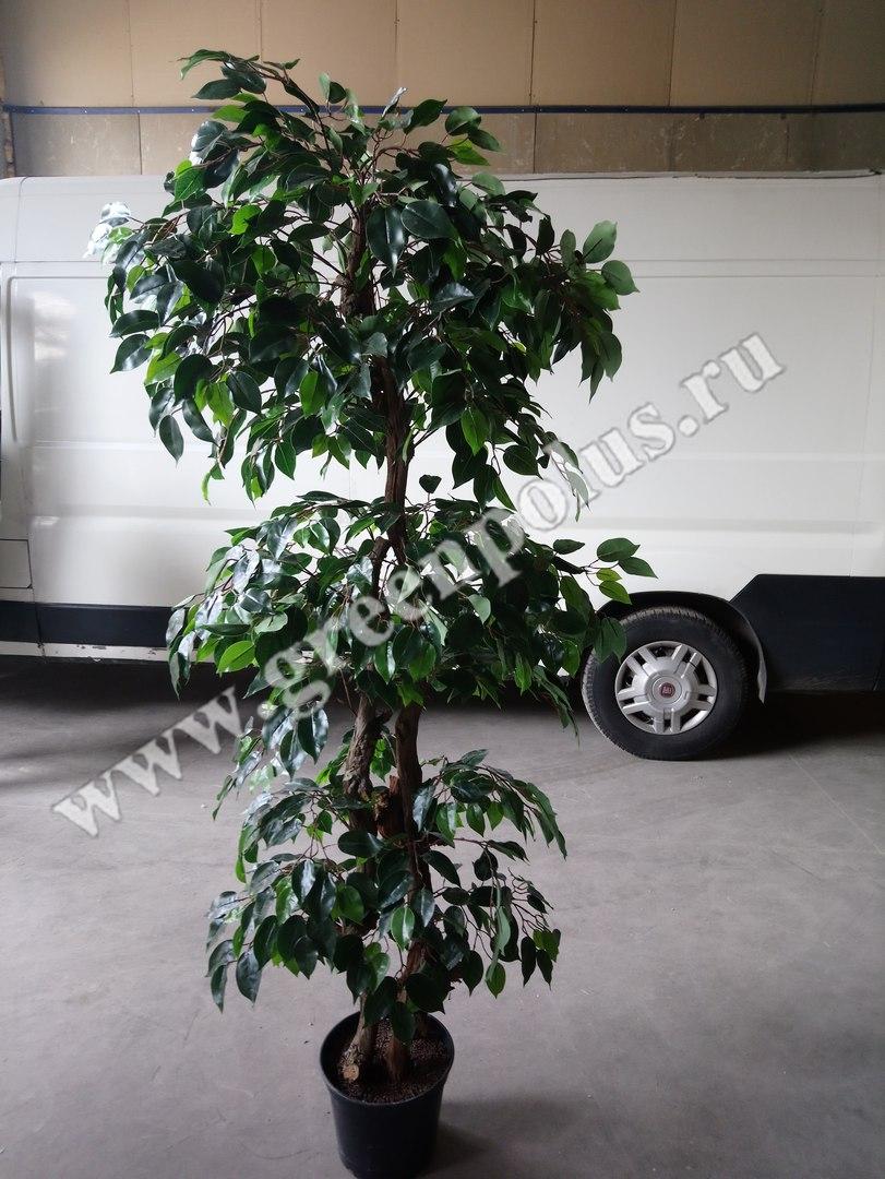 искусственное дерево 2 м.