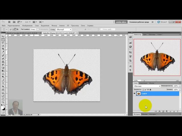 как в фотошопе сделать полёт бабочки