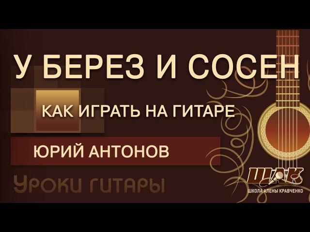 У берез и сосен Антонова топ-разбор песни под гитару. Фрагмент прямой трансляции...