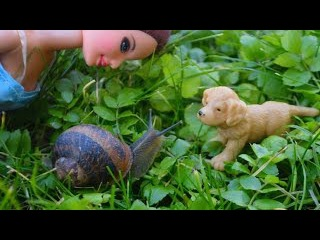 Кукла Барби и её новый питомец для девочек ❤️ Мультик про Барби Развивающее вид...