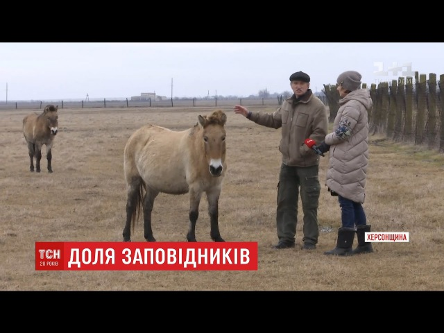 Працівники природних заповідників обурені новим законопроектом Верховної Ради