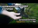 Неожиданная находка в огороде / Teknetics Eurotek Pro / МДРегион