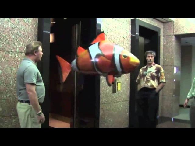 Воздух пловцы удивительная радиоуправляемая летающая Акула и рыба клоун