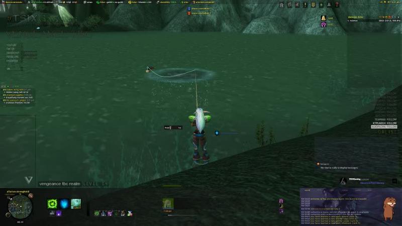Feral druid level 64 burning crusade 2006 vengeance realm