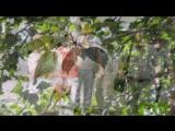 Тополиная пурга...  Песня тронет душу .... Вспомним актера Михай Волонтира..mp4