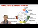 Вебинар Системный подход к здоровью. В рамках Академии здоровья Ольги Бутаковой