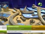 Древняя находка. Новые экспонаты, кости мамонта, передали в окружной музей